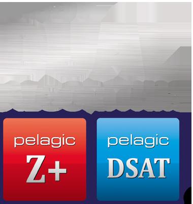 Dual Algorithm