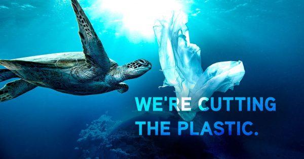 Oceanic Stewardship