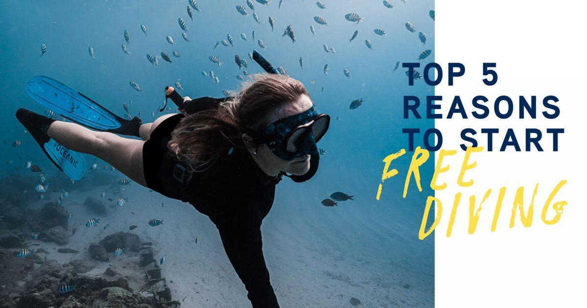 Top 5 Reasons to Start Freediving