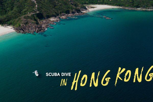 Hong Kong Scuba Diving: Where and When to Go?